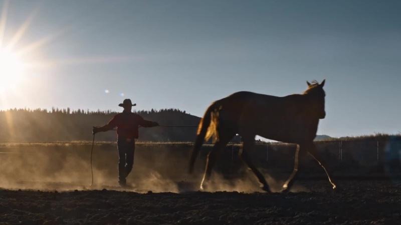 Chevrolet - Cowboy